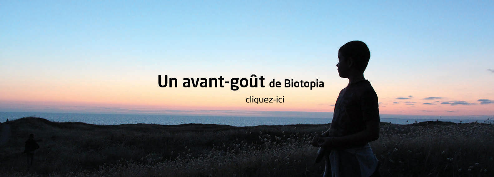 Animation web Biotopia